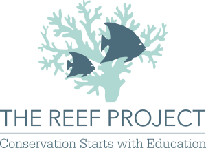 The Reef Project | Conservation Starts With Education